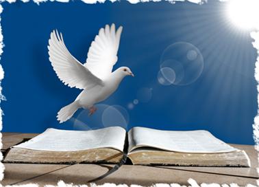 """Palavra do calendário de JAN/FEV2021: """"Um fruto da justiça é semeado na paz para aqueles que trabalham  pela paz"""" (Tg 3,18)."""